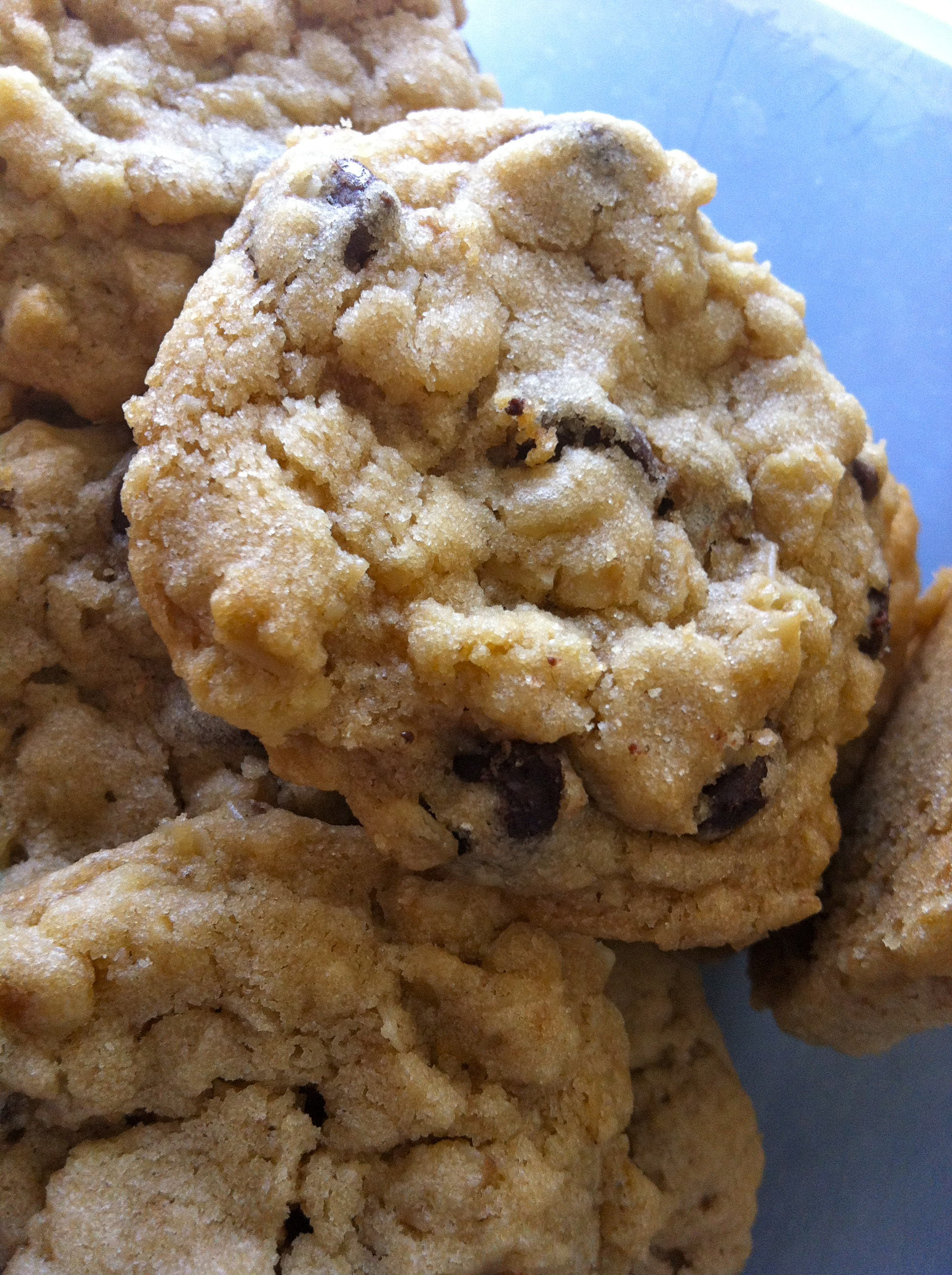 Chewy Oatmeal Chocolate Chip Cookies | Little Bit Sweet